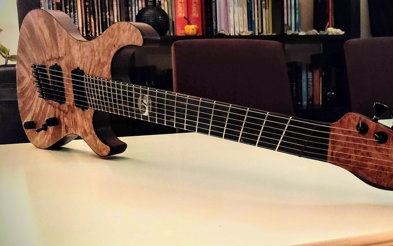 Antoni Guitars - DIY The Beast