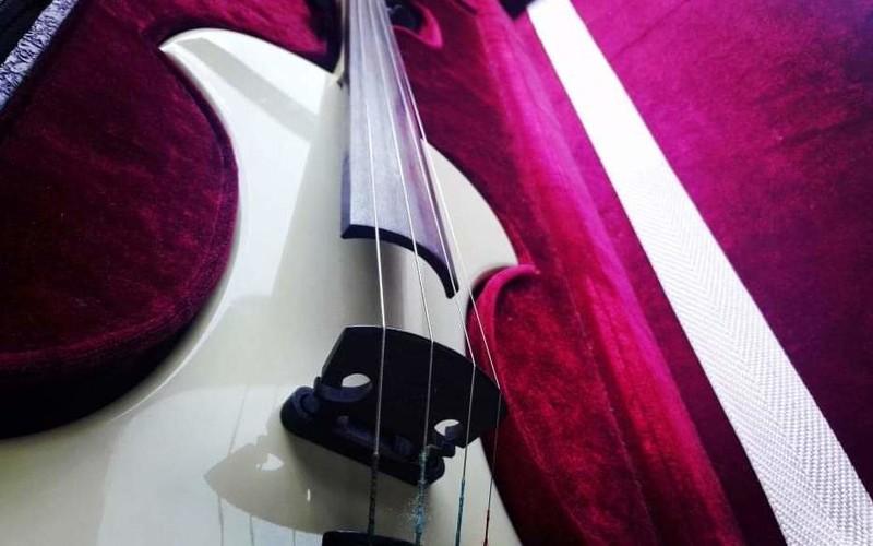 Fender Fv-01