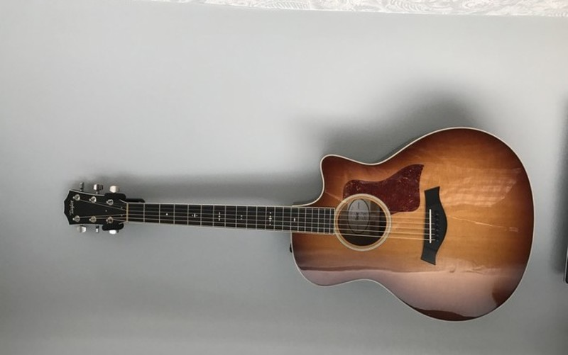 Taylor 516ce Fall Limited Edition